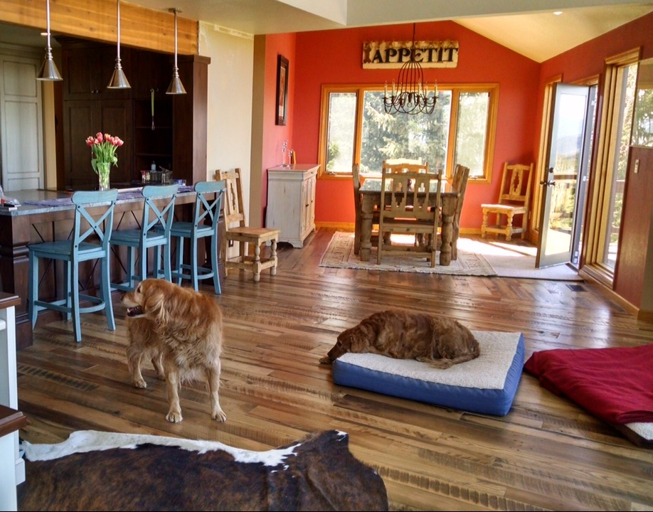 dogs & refinishing your floors