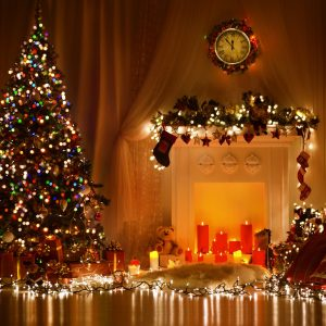 Tips to choosing an eco friendly Christmas tree.
