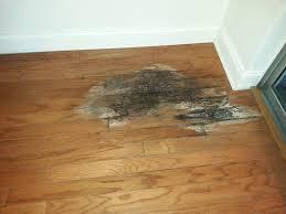 remove road salt stains from hardwood floors